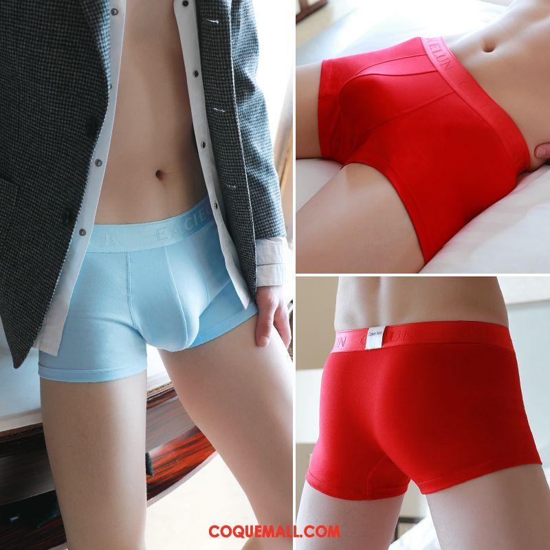 Shorty Homme Jeunesse Coton Qualité, Shorty Milieu Pantalon Blau